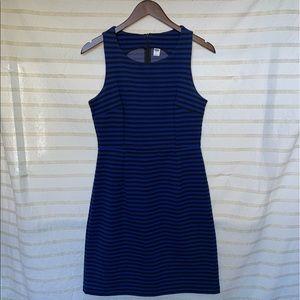 Black & Blue Striped Dress